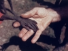 starving-hand-2